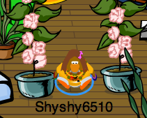me with my rare flowers from rockhopper!