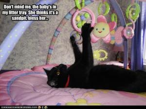 funny-pictures-cat-plays-with-baby-toys