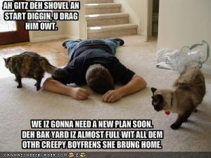 funny-pictures-your-cats-killed-your-boyfriend1